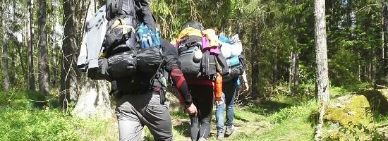 Wandern durch dichte Wälder