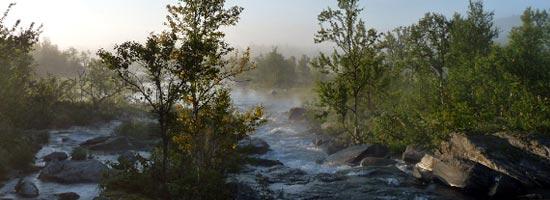 Morgennebel am Ufer des Sees Luvt�vrre