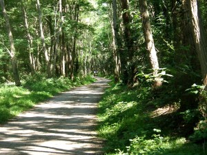 Der Loire-Tal Radweg