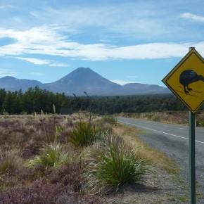 Im Reich der Vulkane: Neuseelands zentrales Plateau