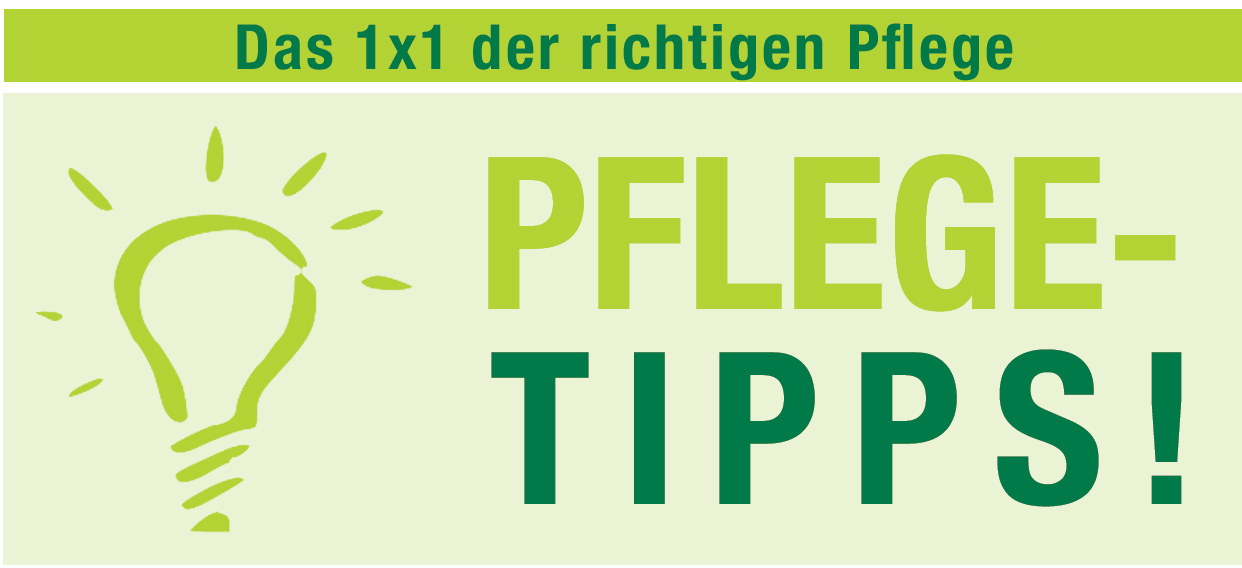 Unterwegs-Outdoor-Pflegetip