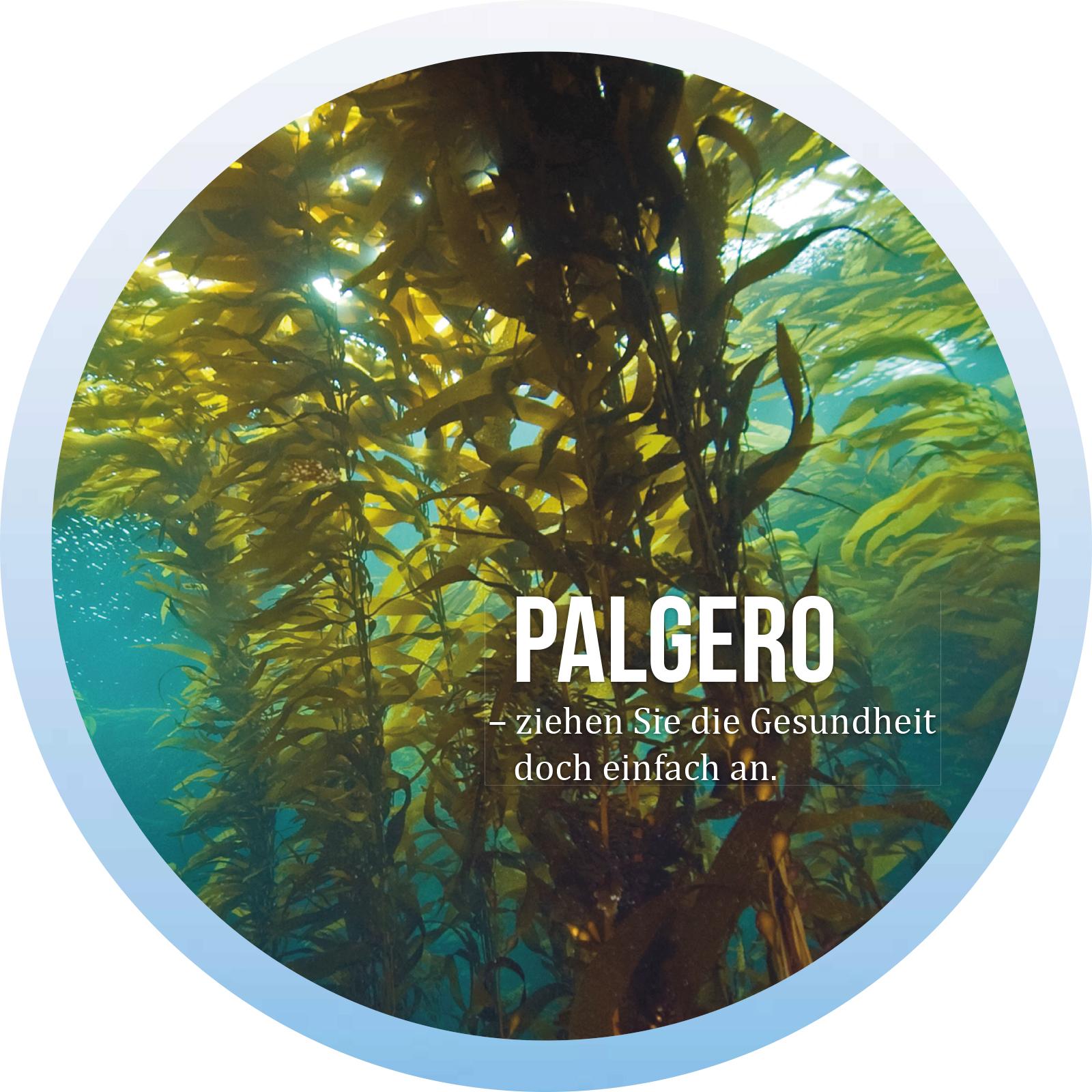Palgero Funktionsbekleidung mit Algen aus Island