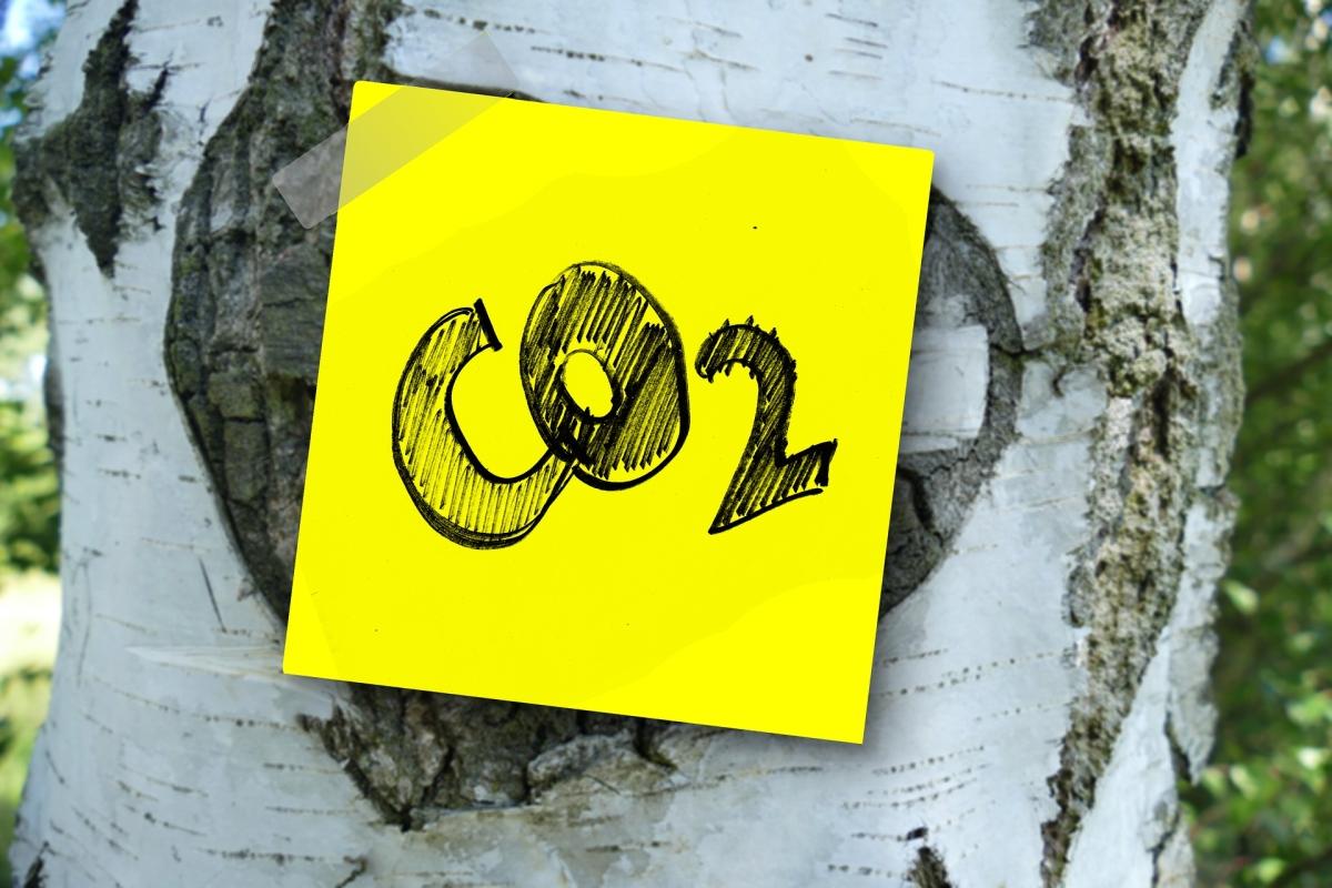 Baum mit CO2 Aufkleber