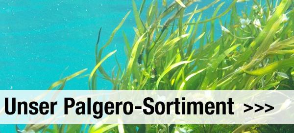 Palgero-Sortiment