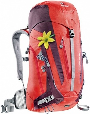 Deuter ACT Trail 28 SL Deuter ACT Trail 28 SL Farbe / color: fire-aubergine ()