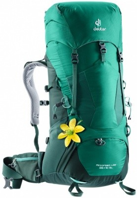 Deuter Aircontact Lite 35+10 SL Deuter Aircontact Lite 35+10 SL Farbe / color: alpinegreen-forest ()